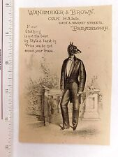 Superb Anthropomorphic Whippet Dressed In Tuxedo Wanamaker & Brown, Oak Hall F46