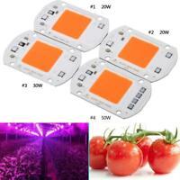 220/110V 20/30/50W Full Spectrum LED COB Chip Grow Light Plant Growing Lamp BG
