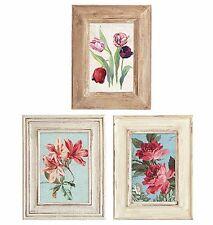 25 Flowers Flea Market Florals Pictures Framed Wallies Wall Paper Sticker Decals