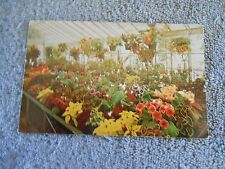 VINTAGE - POST CARD - GREEN HOUSE - KINGWOOD CENTER - MANSFIELD, OHIO