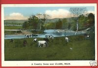 CLARE MI MICHIGAN COUNTRY SCENE NEAR   POSTCARD
