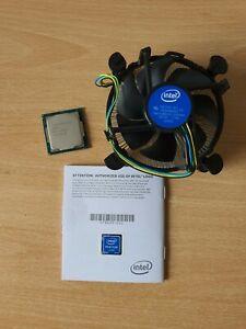 Original Intel Pentium G4560 SR32Y Prozessor 3.5 GHz LGA 1151 Sockel