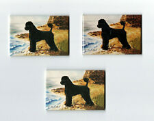New Portuguese Water Dog Magnet Set 3 Magnets By Ruth Maystead Mfr # Pwd-4