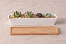 1x Mini Long White Ceramic Flower Pots Miniatures Planter Garden w/ Bamboo Tray