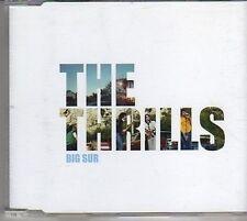 (BM382) The Thrills, Big Sur - 2003 DJ CD