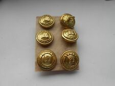 six nourse line  shipping  line buttons  gold gilt  finish  by firmin london