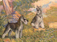 SCHNAUZER TWO DOGS CHARMING DOG GREETINGS NOTE CARD