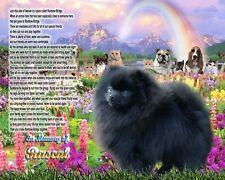 Rainbow Bridge Poem Black Pomeranian Dog Memorial Personalized w/Pet's Name
