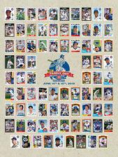"2013 CHICAGO CUBS 18""x 24"" Santo Sandberg Jenkins Ernie Banks Poster WRIGLEY WOW"