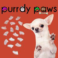 Clear Jumbo Size Soft Nail Caps For Dog Claws * Purrdy Paws * USA * XXXL