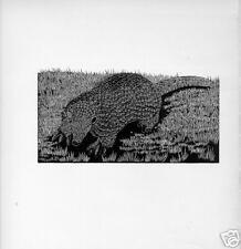1928 Unusual woodcut Great Armadillo mammal