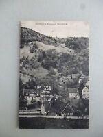 Ansichtskarte Waldulm Gasthaus z. Rebstock 1923  (Nr.618)