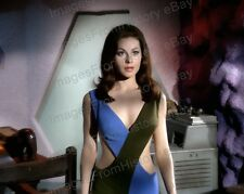 8x10 Print Sherry Jackson Star Trek What Little Girls are Made of 1968 #SJ2