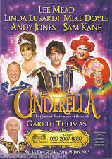 Event Promo Flyer: Cinderella (New Theatre, Cardiff, 2014) (Mead/Lusardi/Thomas)