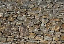 Fototapete 8-727 Stone Wall 368 x 254 cm - keine Lieferkosten - exklusiv