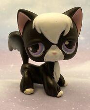 Littlest Pet Shop Authentic No # Black White Tuxedo Angora Cat Purple Eyes