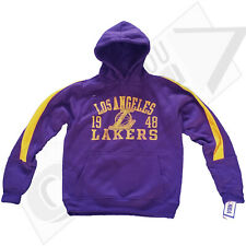 Los Angeles Lakers 1948 Distressed Arch Team Name Arm Stripe Pullover Hoodie