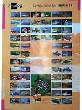 AQUALOG: Poster All L-Numbers (Loricariidae/plecos) # 1, LAMINATED