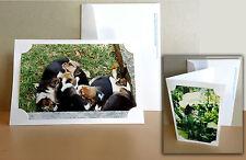 25 White Blank Photo Cards and white envelopes