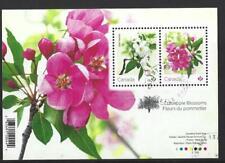 Kanada 2021 Holzapfel Blüten Miniatur Blatt Fein Gebraucht