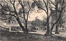 POSTCARD  URUGUAY   MONTEVIDEO   Vista  del  Prado