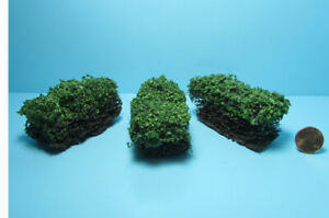 Dollhouse Miniature Outdoor Border Hedges in Green Set of 3 CA0315