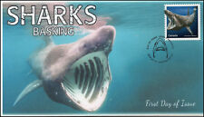 Ca18-024, 2018, Sharks, Pictorial, First Day Cover, Basking