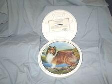 "Sheltie Plate 8"" Porcelain Summer Outing by Edward Aldrich Danbury Mint"
