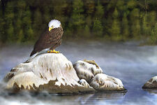 "77 ""Eagle at Gull Rock"" 23.5x35 Canvas Print by Robert Metropulos"