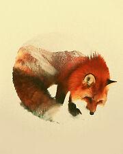 "Beautiful Fox Abstract Canvas Art Print Poster  8 X 10"""