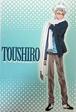Bleach Hitsugaya Fall Clothes Post Card Anime NEW