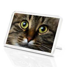 Beautiful Tabby Cat Face Classic Fridge Magnet - Kitten Cute Animal Gift #14164