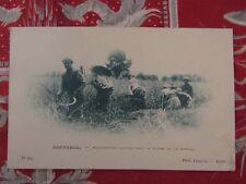 cpa algerie boufarik moissonneurs kabyles la mitidja