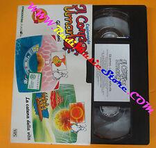 film VHS ESPLORANDO IL CORPO UMANO Gli ormoni La catena della vita (F135*)no dvd