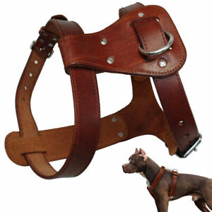 Genuine Leather Dog Harness Small to Large Dogs Heavy Duty Walking Vest Bulldog