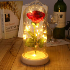 Beauty & Enchanted Preserved Fresh Real Rose The Beast Glass Cover+LED Light.