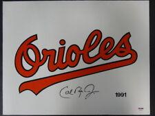 Cal Ripken Jr. Signed 18x14 Orioles Logo Jersey Autograph Auto PSA/DNA Z25529