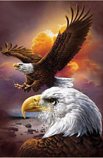 """Counted Cross Stitch Kit """"Eagle Spirit"""" by Andrea's Designs"""