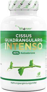 Cissus Quadrangularis Intenso - 180 Kapsel (V) 725 mg Extrakt - 40% Ketosterone