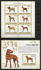 Comoros Comores 2009 MNH Dogs Boerboel Azawakh Aidi 6v M/S 1v S/S Chiens Stamps