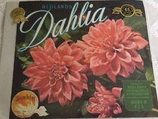 Vintage Original REDLANDS DAHLIA CITRUS Crate Box Label Sunkist Unused
