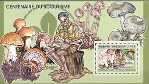 (223771) Scouting, Mushrooms, Guinea