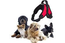 Pettorina imbracatura per cane a maglia aperta taglia L large 62-77cm 21-35kg
