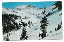 Vintage Colorado Chrome Postcard Winter Rockies Pearl Basin Maroon Snowmass Elk