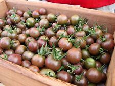 Chocolate Cherry Heirloom Tomato Seeds- 2018- 30+ Seeds      $1.69 Max Shipping