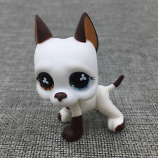 Littlest Pet Shop #577 GREAT DANE DOG Flower Eyes Puppy Toys RARE Hasbro Gift To