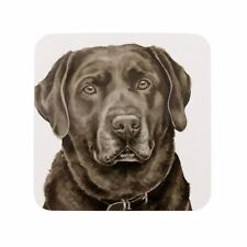 Waggy Dogz marron LABRADOR CHIEN TOUTOU fabriqué en Royaume-Uni cadeau NEUF