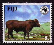 Fidschi 508 **, Zuchtbulle