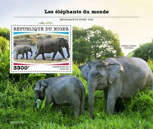 Niger Wild Animals Stamps 2020 MNH Elephants African Elephant Fauna 1v S/S