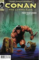 Conan The Cimmerian Comic 16 Cover A First Print 2009 Timothy Truman Giorello